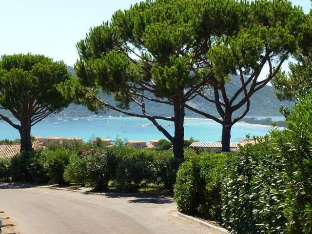 Villa T3 vue mer à Santa-Giulia - ポルトヴェッキオ - 一軒家