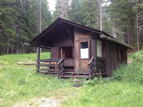 Wspaniały domek w lesie!
