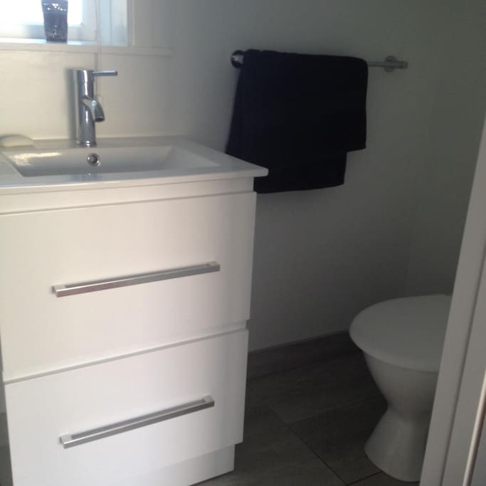 Shower and toilet/Vanity