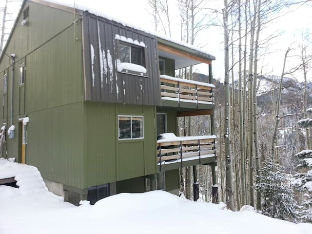 Ski House Near Solitude Resort - Salt Lake City - House