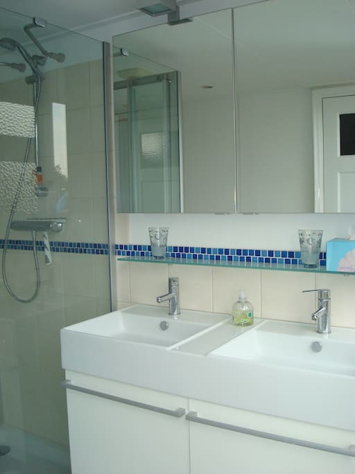 Bathroom with two bassins, shower, toilet and washing machine