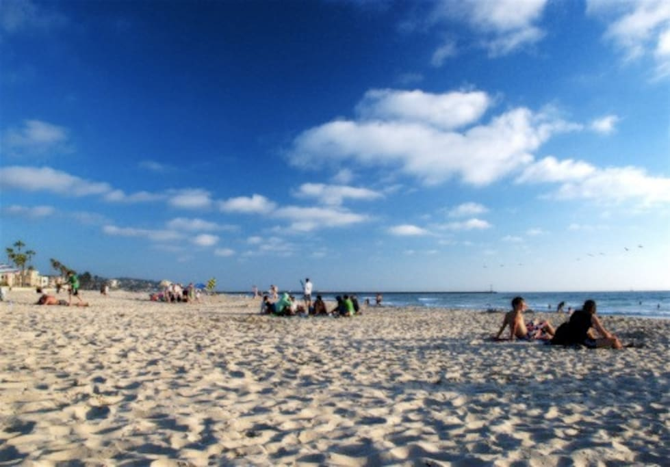 Beautiful warm beaches in front of our building with excellent surf, swimming, sun bathing