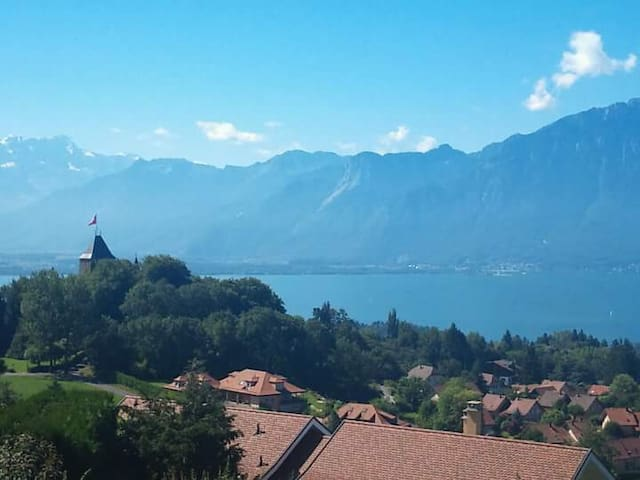 Breathtaking home with amazing views of the region - Saint-Légier-La Chiésaz