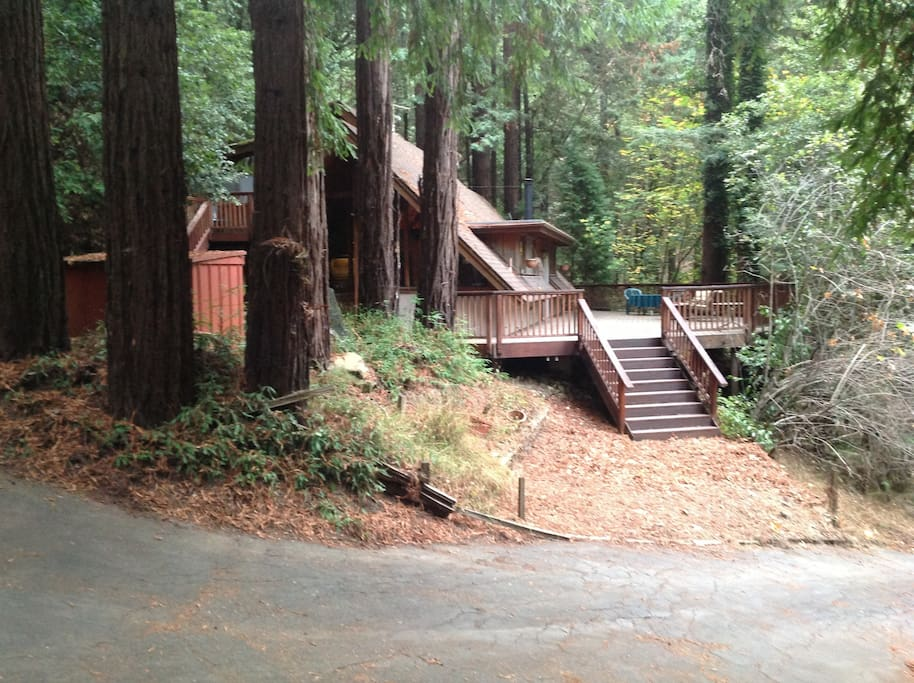 Cabin with large deck, surrounded by Redwood Trees and the sound of a nearby seasonal creek.