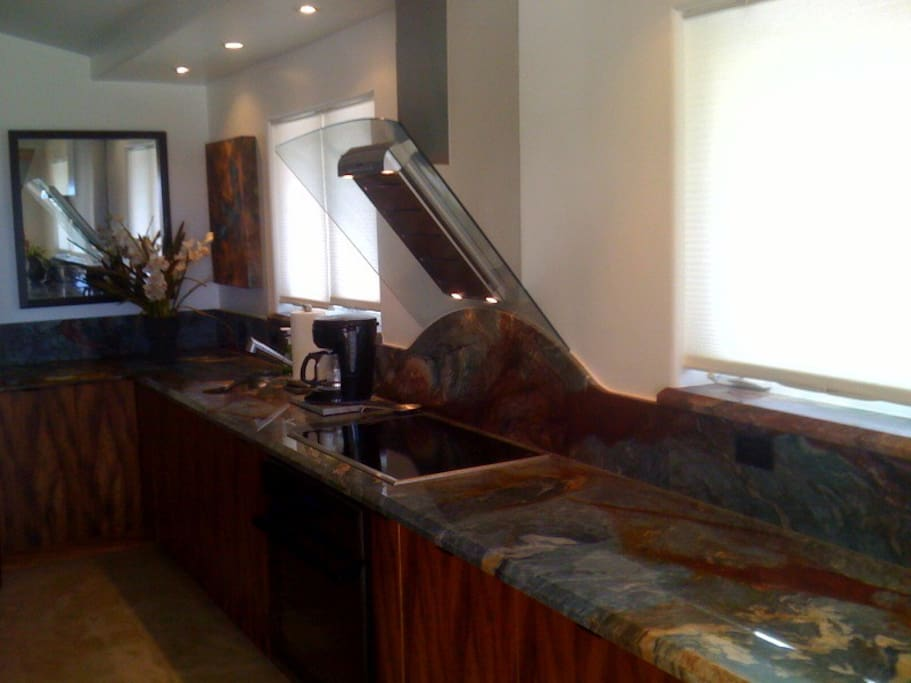 Gourmet kitchen with induction stove top.