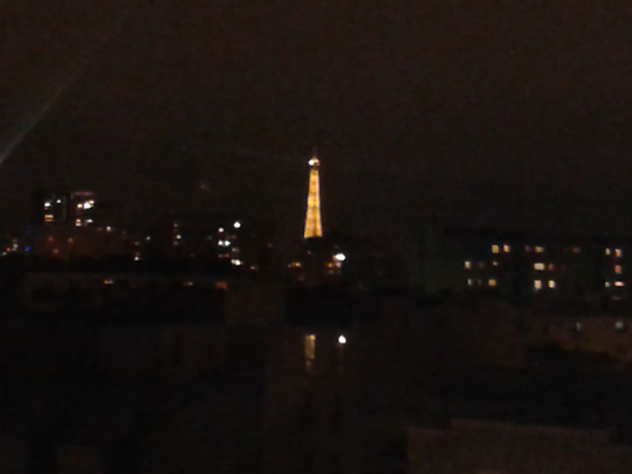 View of Eiffel tower by night from flowered bedroom