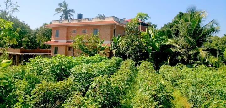 The Serene Orange Brick House