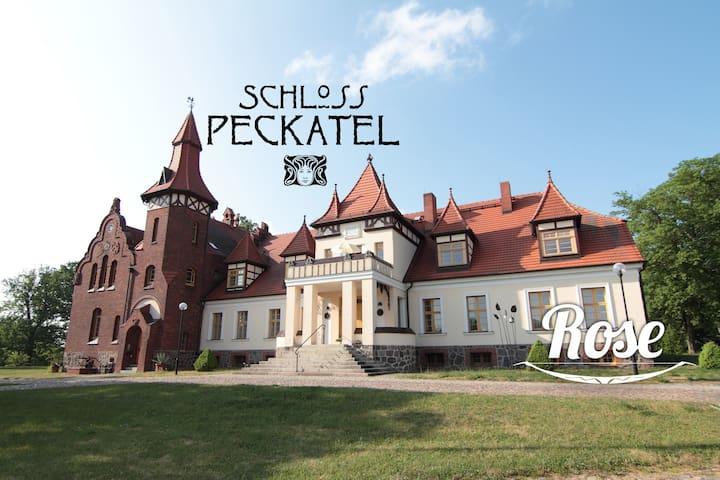 Ferien am Müritz-Nationalpark im Schloss Peckatel - Klein Vielen - Apartment