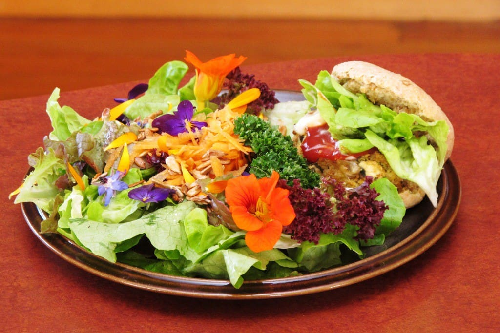 Example of a vegetarian seasonal dinner available (Tofu burger with wholemeal bun and salad), $15-$20 per person.