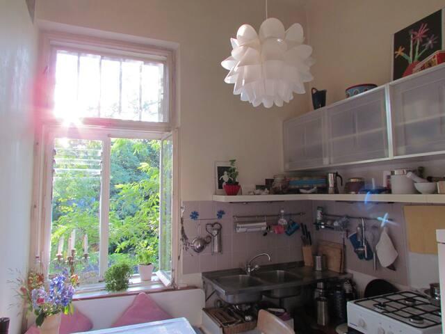 Küche mit Blick ins Grüne