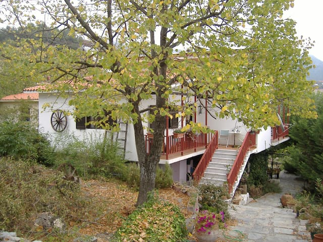 Comfortable 2 room mountain lodging - Peristera - Daire