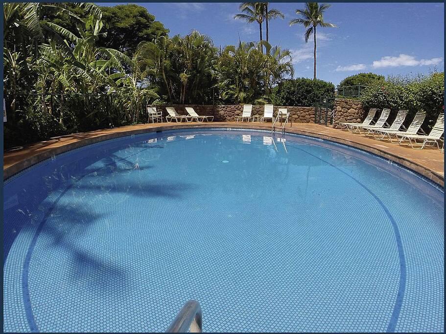 Relaxing pool fully inclosed