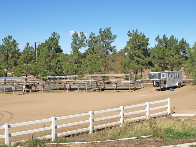 Paddocks available for visiting horses