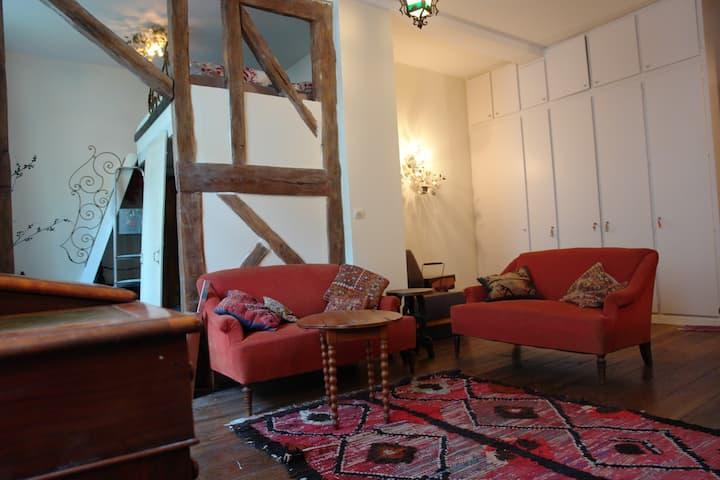 Great apartment place des Vosges