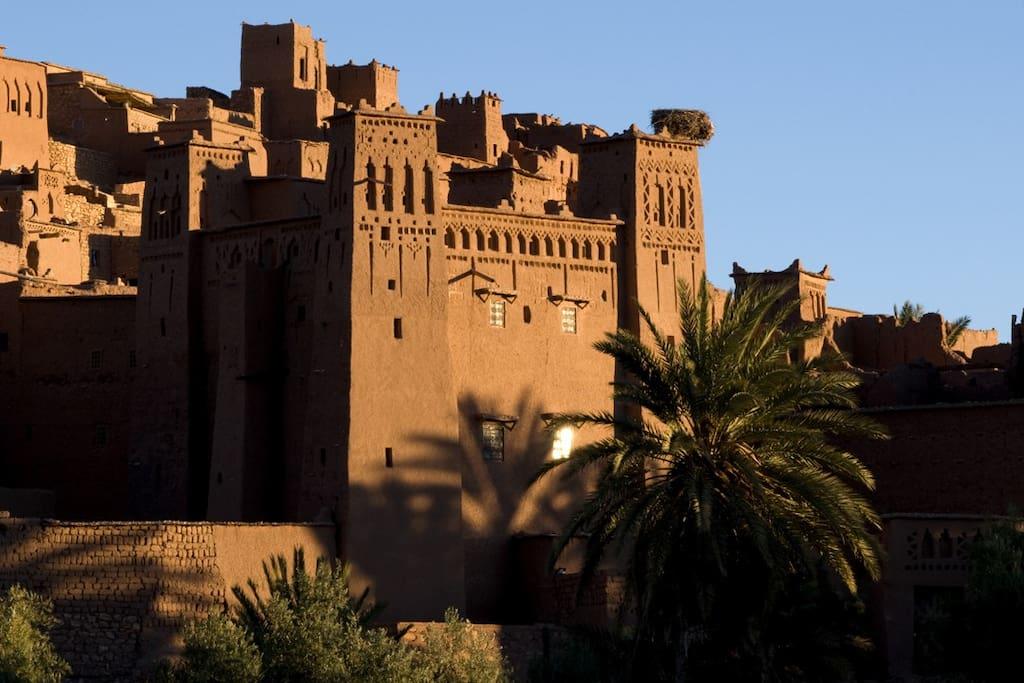 La kasbah Tebi se trouve derrière le palmier, on voit le nid de cigognes qui trone sur l'une des tours