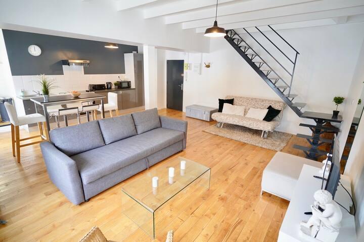 Duplex neuf ( 8 pers) St Didier-Vaise-Lyon