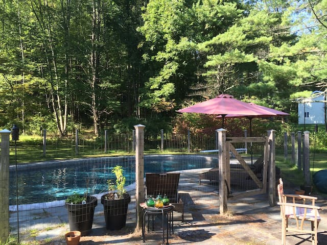 NEW! Wittenberg House w. Saline Pool, Fire Pit, AC - Bearsville - Huis