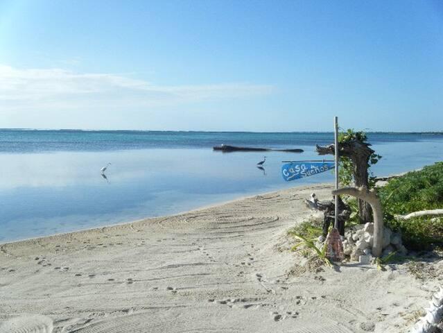 Casa de Suenos lagoon studio - Xcalak