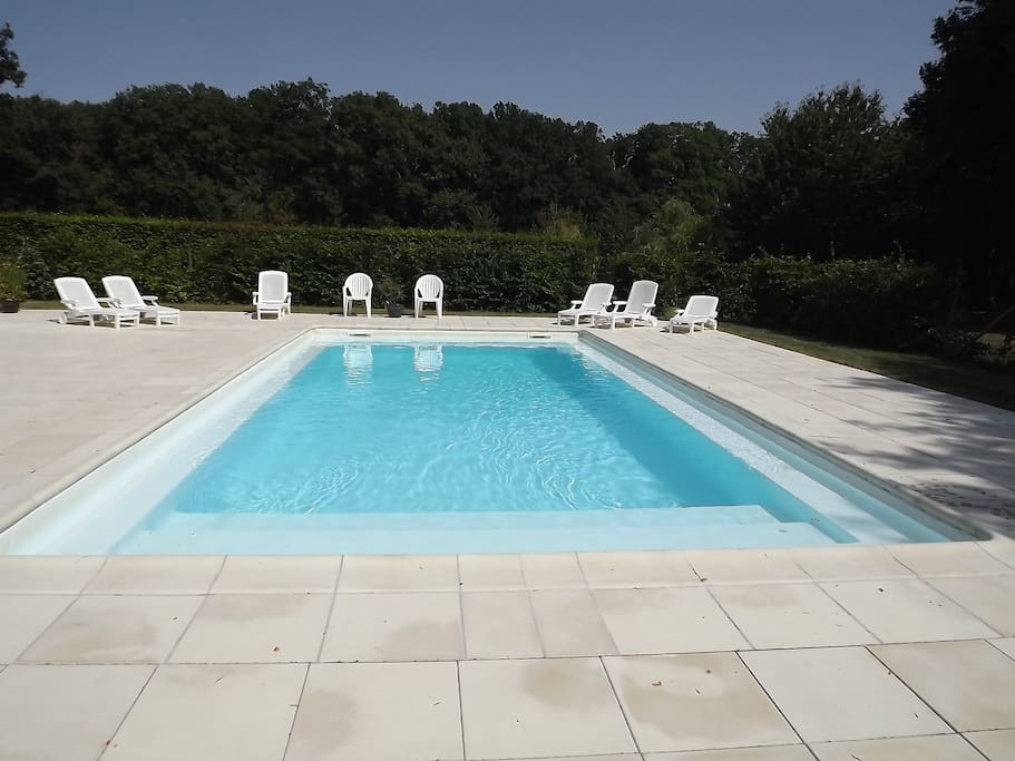 The pool, 10mx5m, secluded and fenced, with a large tiled pool area