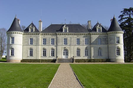 Loire Valley chateau with pool - Savigny-sous-Faye