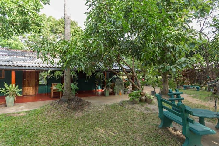 Geethika's Home - Anuradhapura - House