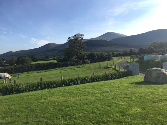 Rooms in Newcastle Farm House overlooking Mournes