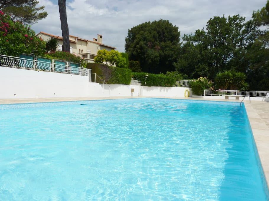 Piscine au pied de l'appartement