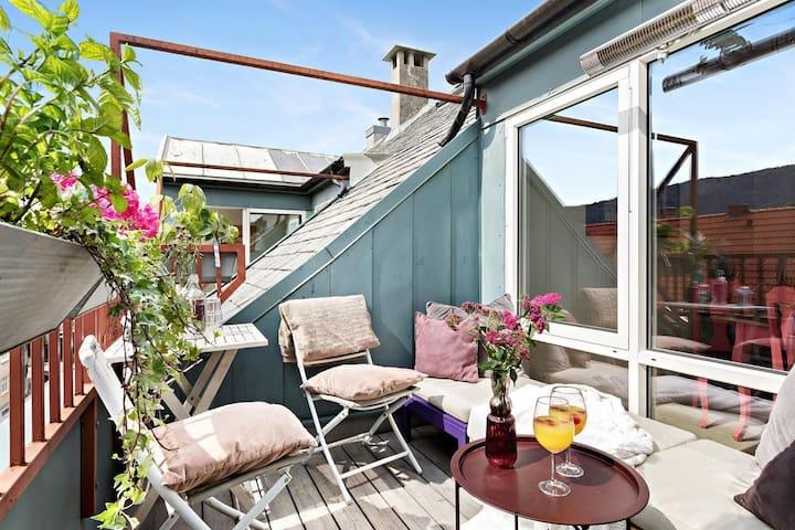 Roof terrasse & free parking!