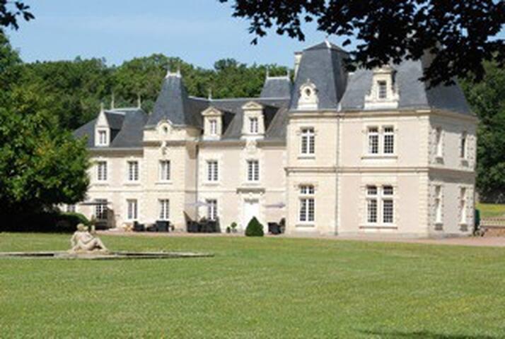Chambre du Joker [4] ( Château de Jalnay )
