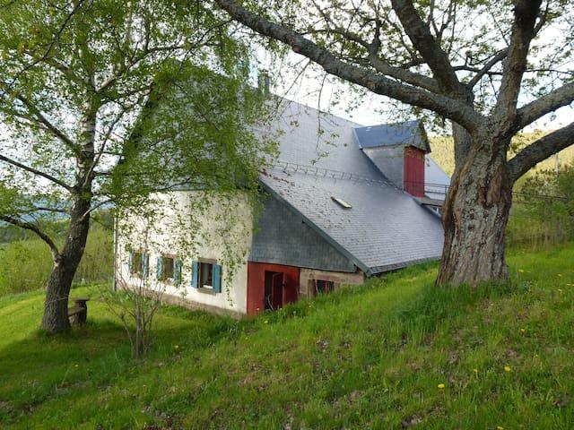Authentique ferme vosgienne dans les montagnes - Orbey - Hus