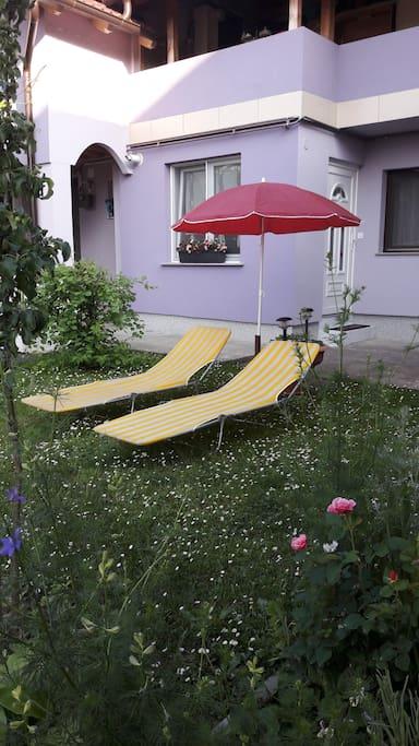 Zelena površina za sunčanje