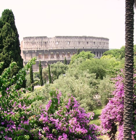 Air of Colosseum: central and cool! - Roma - Flat
