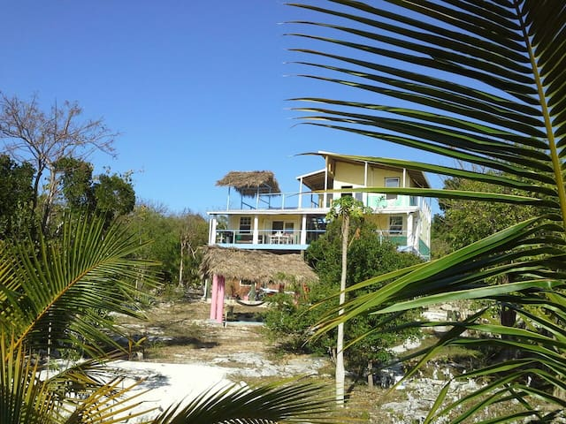 Fun Bahamian Tree House - Stella Maris - Bed & Breakfast