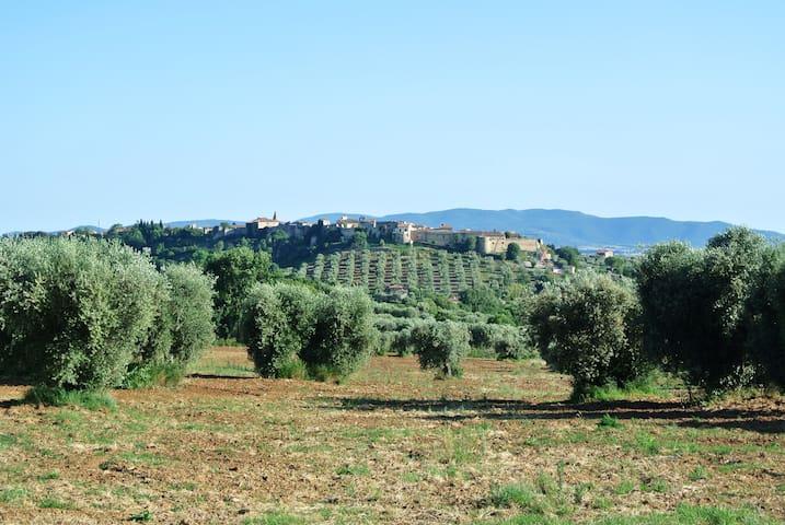IL NIDO - Magliano in Toscana - Lakás