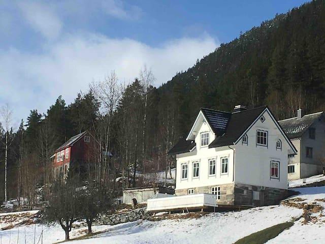 Koselig hus til leige/house for rental