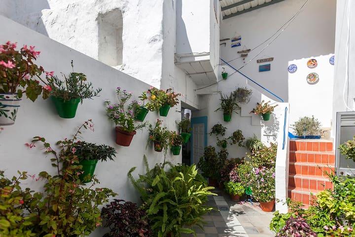 La Albahaca - Patio de mi Casa - Centro tranquilo
