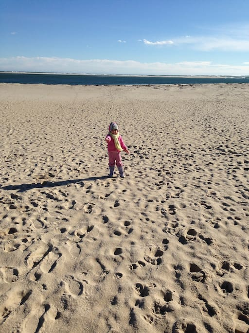 Nantucket Sound Beaches