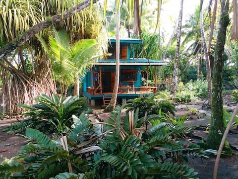 Stunning beach front cabin with highspeed internet