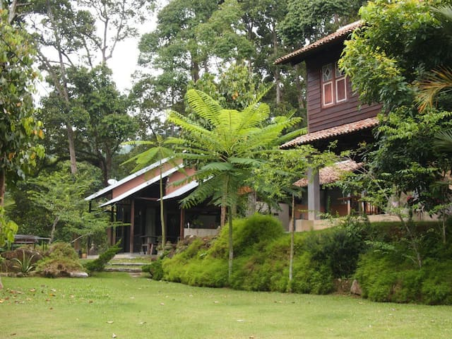 Bali House-Nature Fruit Farm Resort - Balik Pulau - Casa