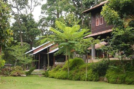 Bali House-Nature Fruit Farm Resort - Balik Pulau - Haus