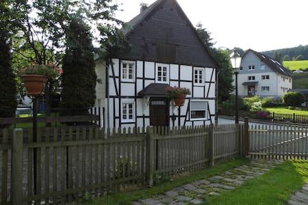Ruim vakantiehuis Am Bach, vlakbij Willingen - Olsberg - Leilighet