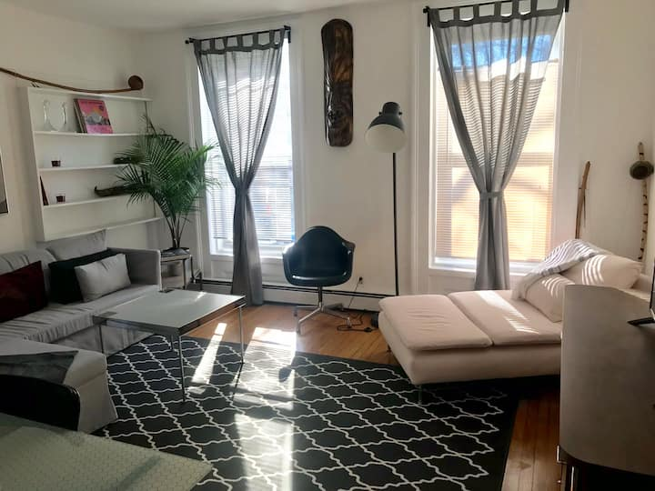 Newly renovated spacious 2 BR apartment downtown