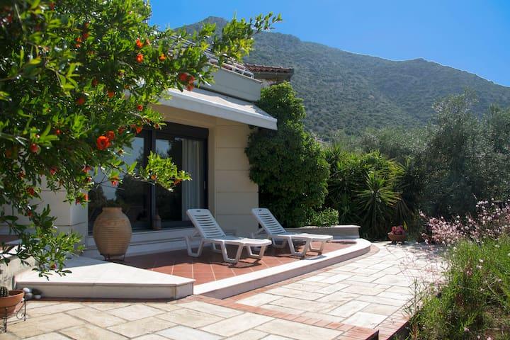 Olive Grove Cottage