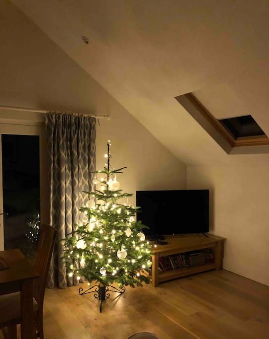 Christmas has arrived at Park Villa Lodge!   Book now to visit North Cornwall at Christmas - homemade mince pies on arrival and our fresh Christmas Tree just waiting for a few pressies!