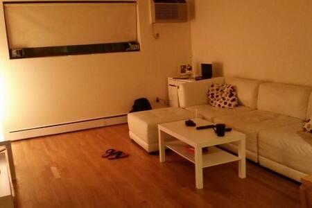 Spacious 1 bed apt in Boston. Mins frm Harvard/BU - Boston - Apartment
