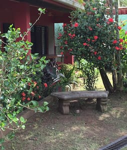 SWEET HOUSE WITH SEPARATE STUDIO- NEW LISTING! - Esterillos Oeste - บ้าน