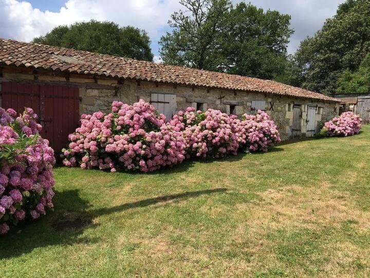 Maison de Charme dans un écrin de verdure Ref 379