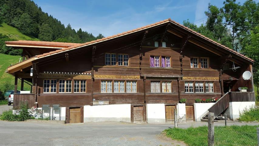 1.5-Zi. Wohnung am Adelrain - Natur pur! - Frutigen - Apartament