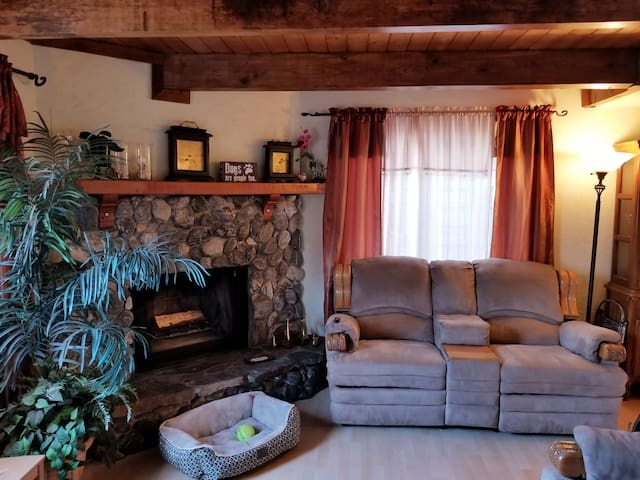 Cozy Big Bear Cottage