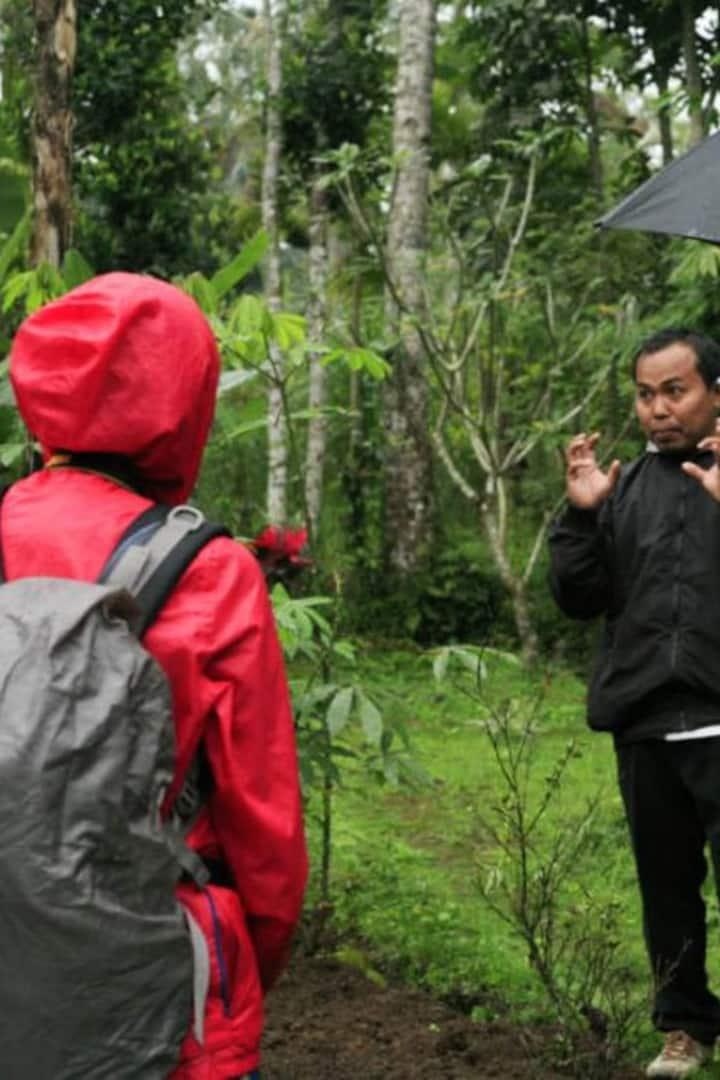 Wayan is explaining the The Farming